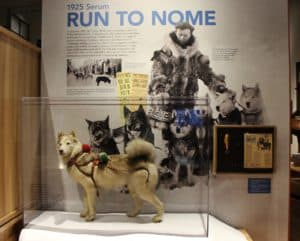 Carrie M. McClain Memorial Museum, Nome Alaska, Nome beaches, Alaska beaches, best hotels in Nome, best restaurants in Nome, things to do in Nome