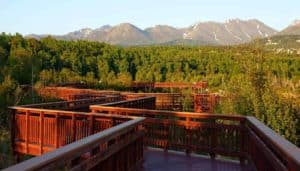 Potter Marsh, Anchorage Alaska, Anchorage Alaska Travel guide. best Anchorage Hotels, best Anchorage Restaurants, best Anchorage Bars, things to do in Anchorage, Anchorage Area attractions, Anchorage beaches