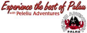 Peleliu Adventures, Palau Travel Guide, beach travel, best beaches of Palau, best diving Palau, best hotels in Palau, best restaurants in Palau, things to do Palau, best beaches of Asia