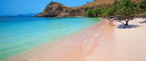 Pink Beach, Komodo Island Indonesia, Komodo Island beaches, best Indonesia beaches, beach travel, best Komodo Island Hotels, best Komodo Island restaurants, best Komodo Island bars, best things to do in Komodo Island, beach travel destinations, Komodo Island snorkeling