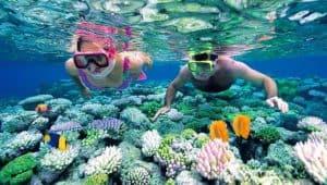 Maldives Scuba Diving & Snorkeling, The Maldives Travel Guide, best Maldives beaches, best beaches of Asia, beach travel, best hotel in the Maldives, best restaurants in the Maldives, best nightlife in the Maldives, Maldives beaches, Maldives luxury resorts