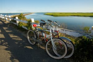 Cape Cod Rail Trail, Cape Cod National Seashore Massachusetts, Massachusetts beaches, best east cost beaches, things to do in Cape Cod, best restaurants in Cape Cod, best nightlife in Cape Cod, best hotels in Cape Cod, Cape Cod attractions, beach travel, beach travel destinations