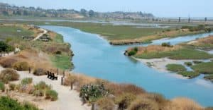 San Elijo Lagoon Ecological Reserve, Encinitas California, Visit Encinitas, things to do in Encinitas, Encinitas attractions, best hotels in Encinitas, best restaurants in Encinitas, best nightlife in Encinitas, beach travel, beach travel destinations, best beach towns