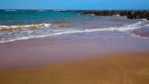 This image has an empty alt attribute; its file name is Caleta-de-Fuste-Beach-300x169.jpg