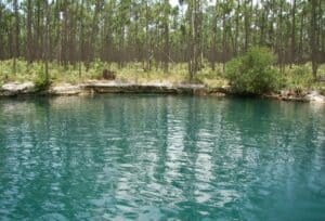 This image has an empty alt attribute; its file name is Sawmill-Sink-Blue-Hole-300x204.jpg
