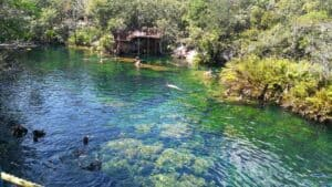 Escondido Cenote, Sian Ka'an Mexico, Sian Ka'an Biosphere Reserve, things to do in Tulum, best beaches of Tulum, best beaches of Mexico, Yucatan Peninsula, Yucatan Peninsula beaches, Sian Ka'an Restaurants, Sian Ka'an bars, things to do in Sian Ka'an, best hotels in Sian Ka'an