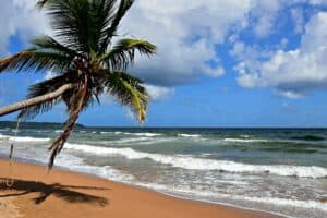 Mayaro Beach, Trinidad travel Guide, Trinidad beaches, Windward Islands, Lesser Antilles, best beaches in the Caribbean, things to do in Trinidad, best Trinidad hotels, best Trinidad restaurants, best Trinidad bars, Trinidad Tours & Activities