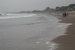 Carpinteria State Beach, Carpinteria vacations, Carpinteria beaches, best California beaches, Central California beaches, things to do in Carpinteria, best hotels in Carpinteria, best restaurants in Carpinteria, best bars in Carpinteria, Carpinteria Tours & Activities, Best Carpinteria beaches