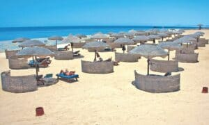 Gorgonia Beach,Marsa Alam Egypt, Marsa Alam Egypt beaches, Sharm El Luli, things to do in Marsa Alam Egypt, Top Beaches of the world, Marsa Alam tours & activities, best Marsa Alam restaurants, best Marsa Alam bars, best Marsa Alam hotels