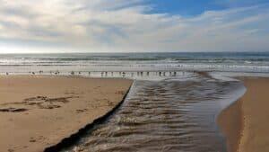Oso Flaco Lake Beach, Oceano California Vacations, best Oceano beaches, California beaches, beach travel, beach destinations, things to do in Oceano, Oceano Tours & Activities, best Oceano Hotels, best Oceano restaurants, best Oceano bars