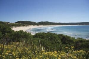 Porky Beach King Island, Tasmania Australia, Tasmania Travel Guide, Tasmania beaches, Australia beaches, things to do in Tasmania, best hotels in Tasmania, best restaurants in Tasmania, best bars in Tasmania, beach travel, Tasmania Tours & Activities
