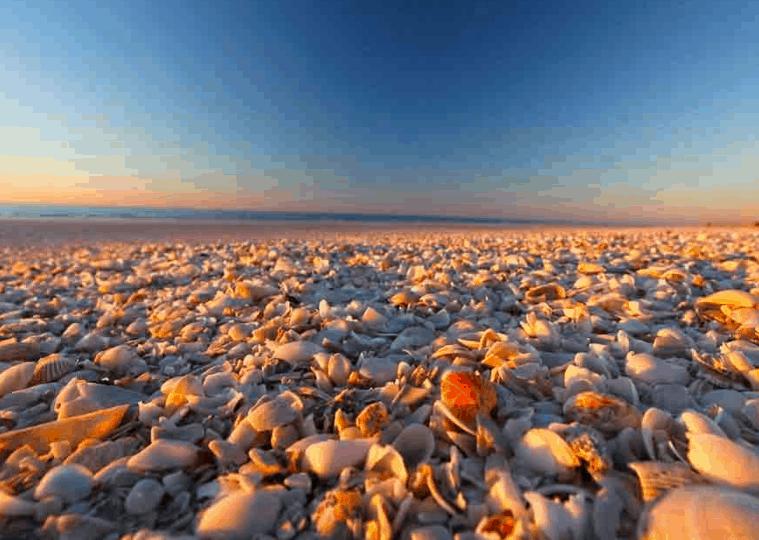 Eighty Mile Beach Marine Park,  Broome Australia, best Broome Beaches, Broome Beaches, beach travel destinations