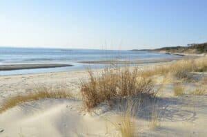 Kiptopeke State Park Virginia, Colonial Beach Virginia Hotels, best Virginia beaches, best Colonial Beach hotels, things to do in Colonial Beach, best Colonial Beach Restaurants, best Colonial Beach bars, best time to visit Colonial Beach,